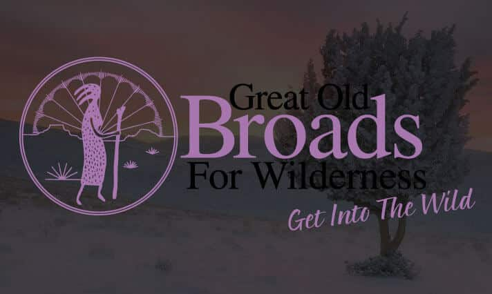 great old broads web site design in durango colorado
